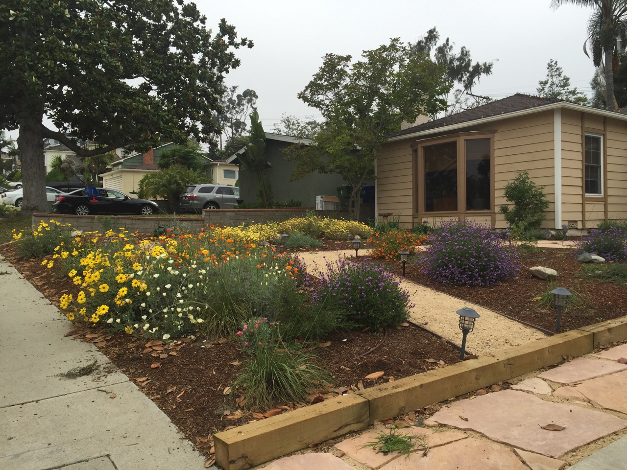 front yard landscaping design job for customer from los angeles, california